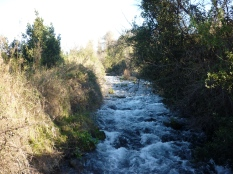 The headwaters of the River Jordan